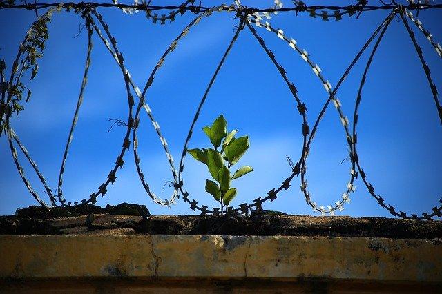Tempérament dépressif : est-ce une prison ?